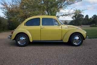363.jpg - phils L bug