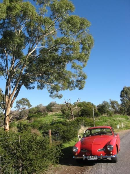 423.jpg - Karmann Ghia at Brownhill Creek South Australia