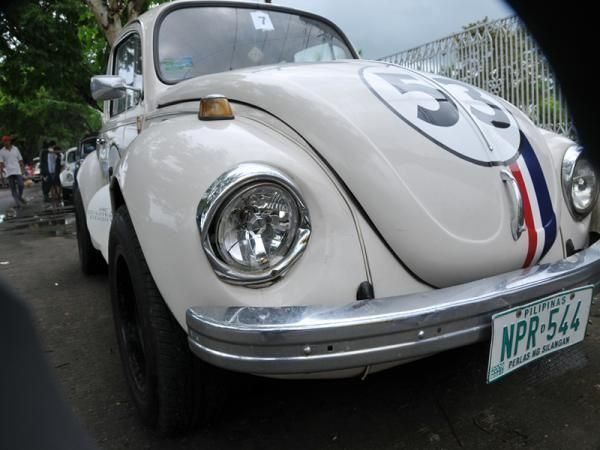 529.jpg - Herbie's right eye