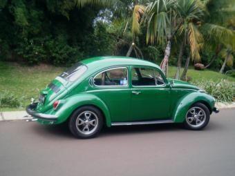 219.jpg - my bug..