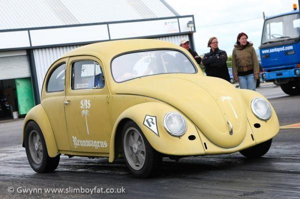 413.jpg - 1954 Bug